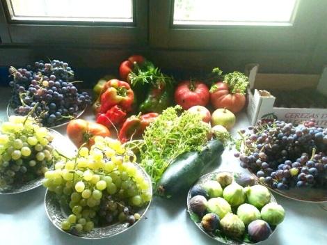 natural_food_RO