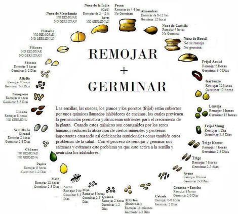 Remojar_germinar