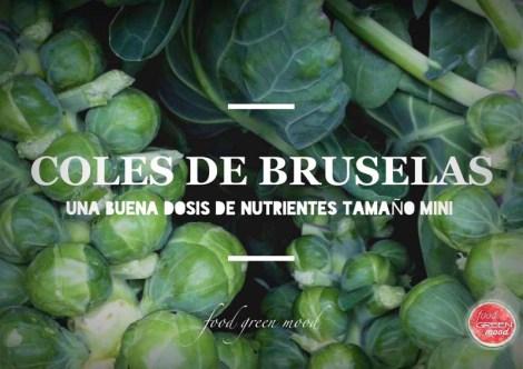 Coles de Bruselas B