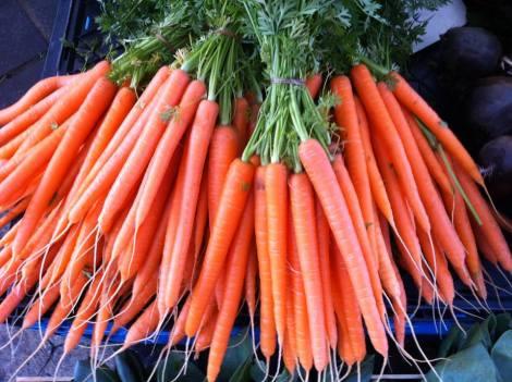 zanahorias111