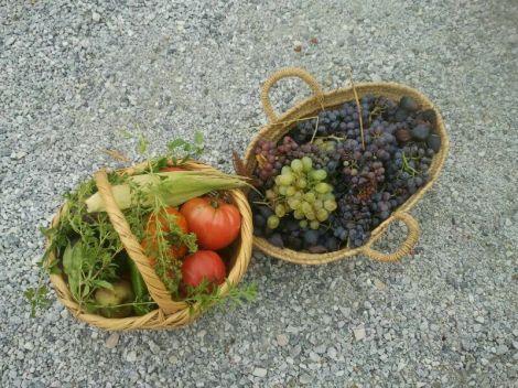 cestas ecologicas
